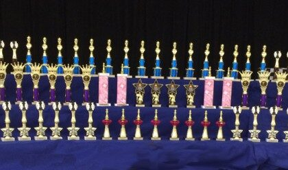 Chess-Trophies-2015-Sonoma-County-California